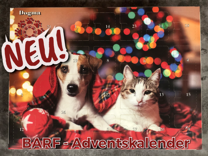 BARF Adventskalender